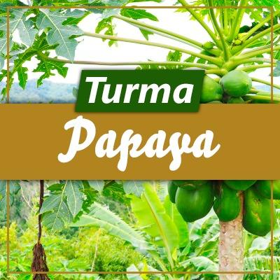 Turma Papaya